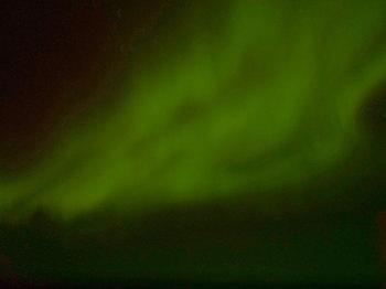 aurola.jpg